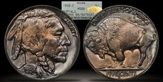 1938-D Buffalo Nickel PCGS MS66 CAC Gold Sticker - Submitted by Dewey Bolton #CoinOfTheDay #COTD Buffalo, Coins, Stickers, Personalized Items, Gold, Coining, Rooms, Sticker, Decal