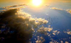 Ηλιοβασίλεμα, Πουλιά, Cloud, Sun, Ουρανό, Κόκκινο