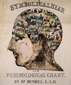 After O.S. Fowler. Symbolical Head. 1845.