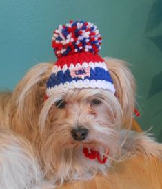 Patriotic Dog or Cat Hat Red White And Blue Pet Hat by Fancihorse