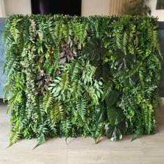 Duży panel zielony wykonany z wysokiej jakości sztucznej zieleni, który pięknie się komponuje z Magnolia, Plants, Magnolias, Planters, Plant, Planting