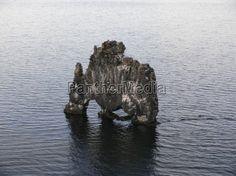 Hvitserkur, der versteinerte Troll bei der Halbinsel Vatnsnes