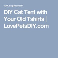 DIY Cat Tent with Your Old Tshirts | LovePetsDIY.com
