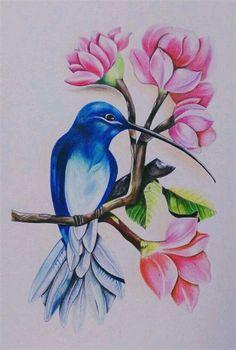 Oil Pastel Art, Oil Pastel Drawings, Bird Drawings, Colorful Drawings, Aquarell Tattoo Vogel, Hummingbird Painting, Indian Art Paintings, Color Pencil Art, Colored Pencil Artwork