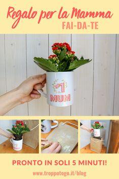 Volete farle un regalo davvero speciale, ma anche facile e veloce? Con il nostro tutorial potete creare un regalo per la Festa della Mamma dal successo assicurato! #mamma #festadellamamma #mum #mom #mothersday #gift #idea #idee #regalo #fiori #last #minute Last Minute