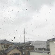 In winter my hometown is always dark gray. So I admire who is able to use brilliant color.  中学か高校の時に読んだ小説に出てきた鈍色の空という言葉でにび色を知りました正しく私の故郷の冬を現す色は今でもこれ以外ないと思っていますこの暗くて重たい空に傘もさせない強い横殴りの雨かみぞれ今更ながらあざやかな色への憧れはここからきているのかもと気づいた日でした暮らすにはやっぱり南がいいと思う