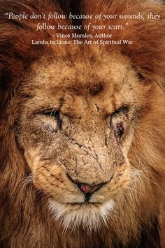 #LambsToLions #AlphaLion12