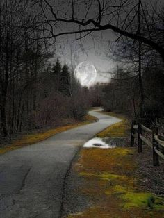 Country Road To The Moon.Oh Fly Me to the Moon, Down the Road to my Home. My Mind has Flown There Many Times Before. by araceli Beautiful Moon, Beautiful World, Stars Night, Shoot The Moon, Moon Pictures, Moon Magic, Night Skies, Mother Nature, Beautiful Pictures