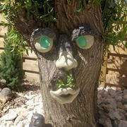 How to Mold Tree Faces eHow Home & Garden Landscaping & Outdoor Building Special Outdoor Projects Ho How To Make Trees, Concrete Art, Cement, Concrete Leaves, Outdoor Buildings, Tree People, Tree Faces, Outdoor Trees, Tree Trunks