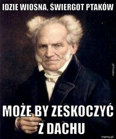 Arthur Schopenhauer (Stanford Encyclopedia of Philosophy) Best Memes, Funny Memes, Hilarious, France Culture, Savage Worlds, Everything And Nothing, History Memes, Men's Grooming, Literature