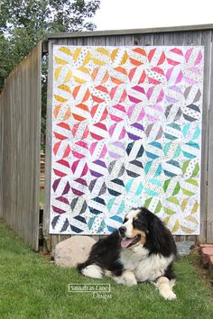 Privet Drive quilt pattern Sassafras Lane Designs modern Reposted for the dog Jelly Roll Quilt Patterns, Modern Quilt Patterns, Loom Patterns, Modern Quilting, Quilting Tutorials, Quilting Projects, Quilting Designs, Quilting Ideas, Craft Projects