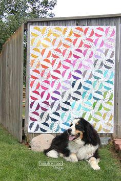 Privet Drive quilt pattern Sassafras Lane Designs modern Reposted for the dog