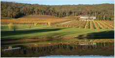 Home Wineries, Vineyard, Victoria, Outdoor, Outdoors, Wine Cellars, Vine Yard, Vineyard Vines, Outdoor Games