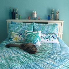 Teen Girl Bedrooms remarkable and exceptional example 1570370765 - Attractive and wicked teen girl room tactic. For more rad examples simply visit the pin image today. Bedroom Themes, Bedroom Decor, Bedroom Ideas, Ocean Themed Bedrooms, Themed Rooms, Bedroom Images, Pottery Barn, Mermaid Bedroom, Teen Girl Bedrooms