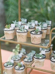 A Fall Wedding at Rancho Las Lomas with the Prettiest Blue Color Palette Wedding Favors For Guests, Wedding Gifts, Blue Colour Palette, Color, Guest Gifts, Fall Wedding, Wedding Flowers, Spring Weddings, Table Decorations