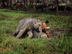 Thailand, by Steve McCurry