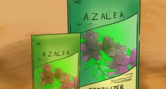 How to Prune Azaleas. Pink, red and white azaleas adorn lawns across the South every spring. These shrubs are hardy and easy to care for because they thrive in many locations and conditions. Learn how to prune azaleas to keep them blooming. Growing Hollyhocks, Growing Dahlias, Growing Plants, Rosa China, Hosta Care, Azalea Bush, Lily Care, White Azalea, Hibiscus