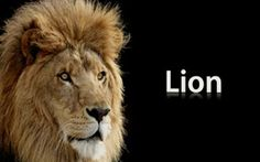 #Apple Releases OS X Lion 10.7.4, Fixes #FileVault Bug