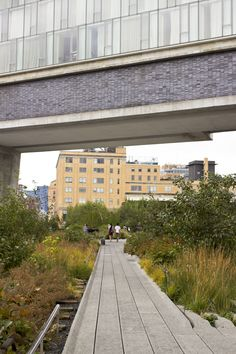 The New York High Line, a city park that's the tops! #travel