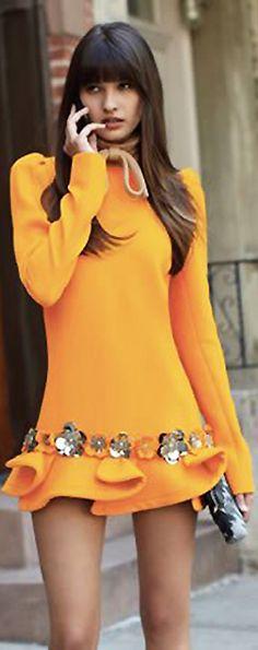 Miu Miu Ruffle Dress   cynthia reccord