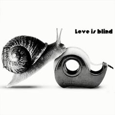 Love is blind. Why So Serious, Best Funny Pictures, Marketing And Advertising, Blinds, Rings For Men, Memes, Creative, Projects, Humor