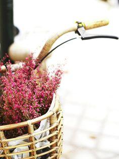 Pink Flowers In Bicycle Basket