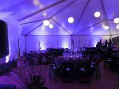 Uplighting Museum of Science Boston - DM Productions Tent Decorations, Boston Area, Wedding Photos, Wedding Ideas, Dj, Museum, Science, Lights, Lighting