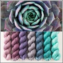 Succulent Hues mini-skein kit from Expression Fiber Arts Yarn Thread, Yarn Stash, Yarn Needle, Yarn Color Combinations, Color Schemes, Yarn Crafts, Sewing Crafts, Expression Fiber Arts, Yarn Inspiration