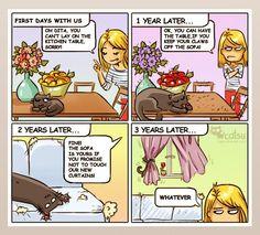 Comics   Catsu The Cat