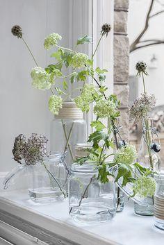 #Green_home #plants - Linda Åhman - Interior Designer