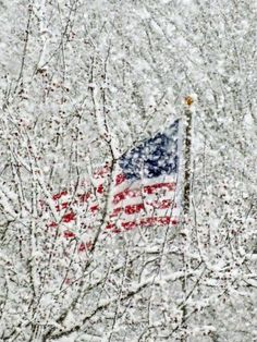 Winter and Old Glory - American Flag. Winter, Spring, Summer, Fall - the USA is best of all! I Love America, God Bless America, Calling America, I Love Winter, Winter White, Winter Colors, Let Freedom Ring, Winter Scenery, Snow Scenes