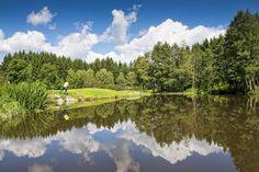 Das #Mühlviertel beim #Golfen entdecken. Weitere Informationen zu #Golfurlaub im Mühlviertel in #Österreich unter www.muehlviertel.at/golfen - ©Oberösterreich Tourismus/Erber Hotels, Golf Courses, River, Outdoor, Tourism, Environment, Outdoors, Outdoor Games, The Great Outdoors