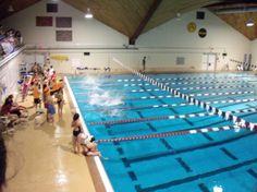 Middlebury Monterey Language Academy Swarthmore Olympics:  At the pool!
