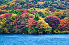 ashi lake. This is one of the most beautiful, colorful landscape i've seen
