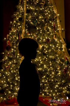 How to Get a Silhouette with your Christmas Tree by August Tea Photography