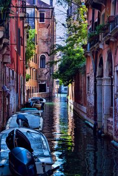 Venice | Italy (by Trish Hartmann)