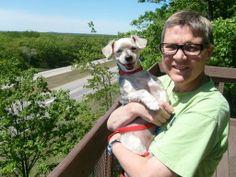Blogging the Cause, Becoming A Change for Animals   C-Dog & Company animals, caus, compani, chang, cdog, blog
