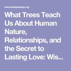 What Trees Teach Us About Human Nature, Relationships, and the Secret to Lasting Love: Wisdom from a 17th-Century Gardener – Brain Pickings (keep chasing links)