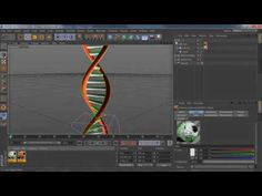 Cinema 4d Tutorial - How to Make a DNA Double Helix in Cinema 4D - YouTube