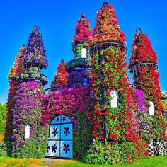 Edited with DeluxeFX app --- Flower castle, Dubai photo by dear @jhimgreg check his awesome feed out #ColorMeSummer