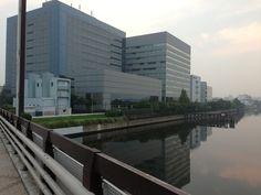 On my way back to Shin-kiba Station from Ageha.