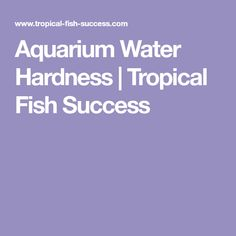 29 best aquarium images in 2018 tropical freshwater fish angel