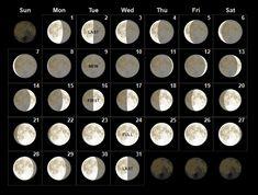 Check out May 2019 Moon Phases Calendar, May 2019 Moon Calendar, Full Moon May 2019 Calendar, New May 2019 Moon Calendar, Lunar Calendar For May 2019 Month New Moon Calendar, June 2019 Calendar, Free Printable Calendar, Printable Templates, Calendar Templates, Calendar Calendar, Templates Free, Online Calendar, Printables