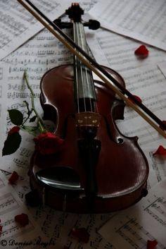 America's Violin