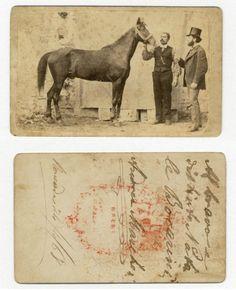 CAVALLO E UOMINI CDV 715 FOTO D EPOCA F.GABINETTO/CARTE DA VISITE-ANNO 1868