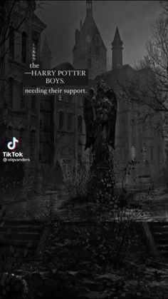 Harry Potter Imagines, Harry Potter Preferences, Harry Potter Feels, Harry Potter Draco Malfoy, Harry Potter Jokes, Harry Potter Fandom, Harry Potter Characters, Harry Potter World, Harry Potter Universal