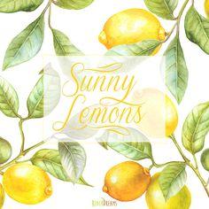 Zitrone-Aquarell-Clipart. Hand-Malerei Obst Kalk von ReachDreams
