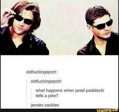 What happens when Jared padalecki tells joke? Spn Memes, Supernatural Memes, Supernatural Wallpaper, Jared And Jensen, Jensen Ackles, Super Natural, Marvel, Jared Padalecki, Destiel