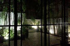 jardin patio