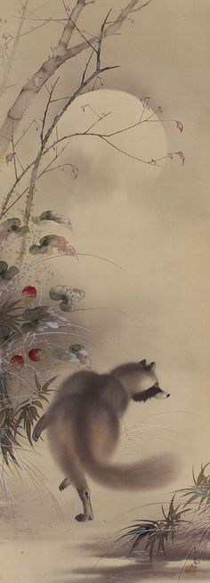 Reserved for Susan Japanese Fine Art Hanging Scroll Painting a Raccoon dog and Trichosanthes cucumeroides in Autumn Night